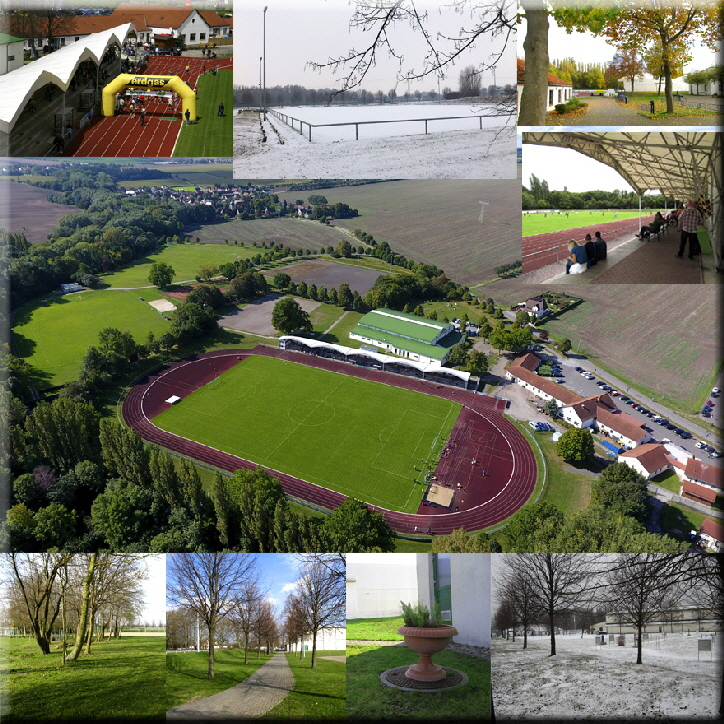 collage_stadion